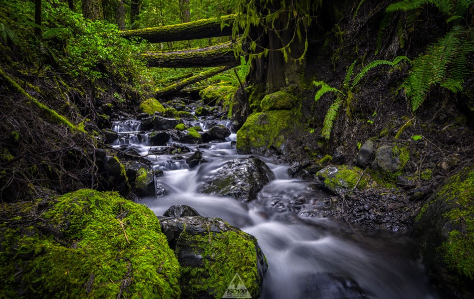 ©Iso100 Photography: Crescent Lake Creek, Washington