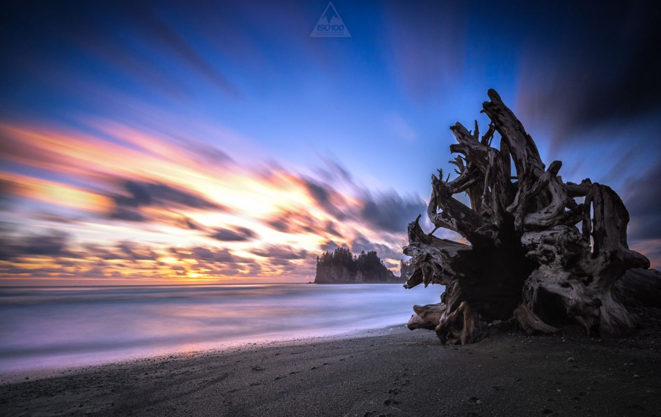 ©Iso100 Photography: La Push, Washington