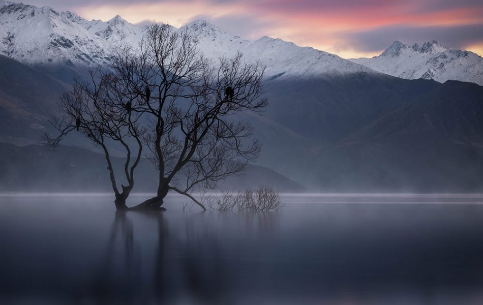 iso100 Photography © Wanaka, NZ